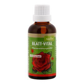 NaturGut Blatt-Vital Konzentrat Pflanzenstärkungsmittel (50ml)