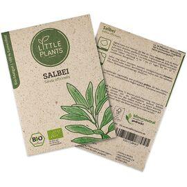 Little Plants Bio-Salbeisamen